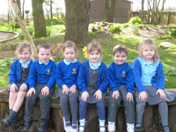 Tavernspite School Photo